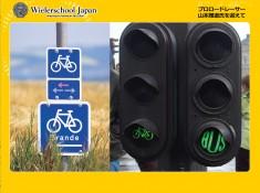 ヨーロッパでは自転車道などがしっかりと整備されている